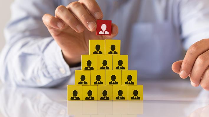 Strategie di definizione della struttura organizzativa: parte 2